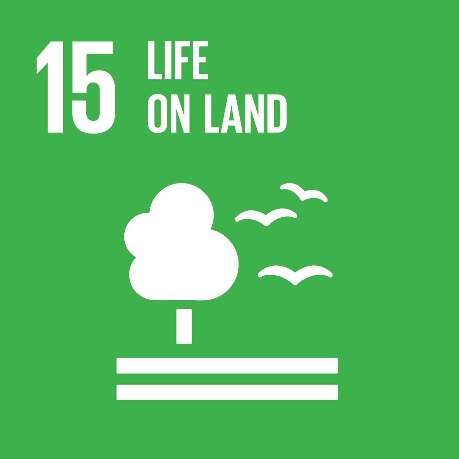 SDG icon 15
